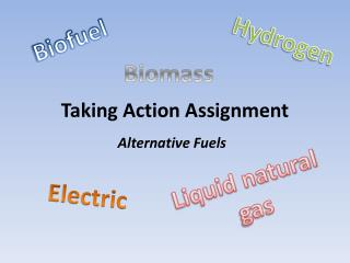 Taking Action Assignment