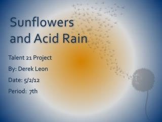 Sunflowers and Acid Rain