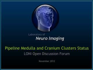 Pipeline Medulla and Cranium Clusters Status LONI Open Discussion Forum November 2012
