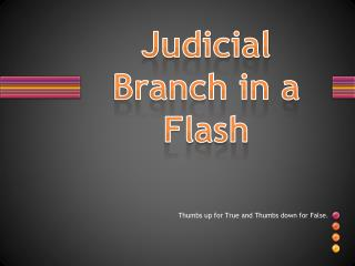 Judicial Branch in a Flash
