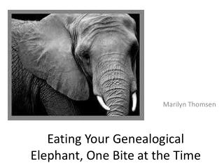 Eating  Your  Genealogical Elephant, One Bite at the Time
