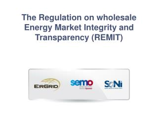 The Regulation on wholesale Energy Market Integrity and Transparency (REMIT)