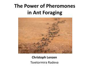The Power of Pheromones in Ant Foraging