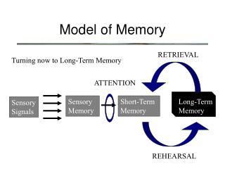 Model of Memory
