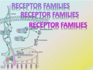 RECEPTOR FAMILIES
