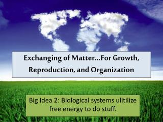 Exchanging of Matter…For Growth, Reproduction, and Organization