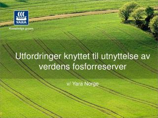 Utfordringer knyttet til utnyttelse av verdens fosforreserver  v/  Yara  Norge