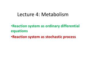 Lecture 4: Metabolism