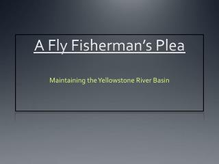 A Fly Fisherman's Plea