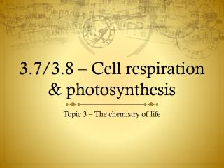 3.7/3.8 – Cell respiration & photosynthesis