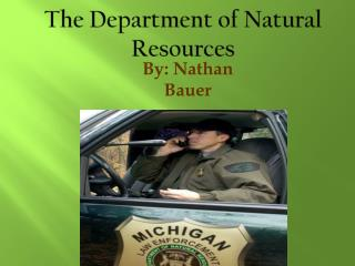 The Department of Natural Resources