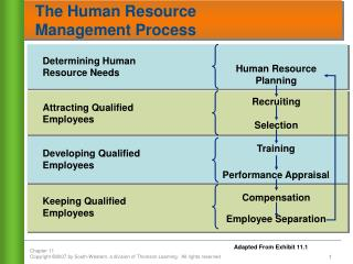 The Human Resource  Management Process