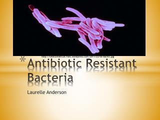 Antibiotic  R esistant Bacteria