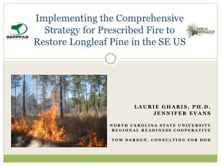 Implementing the Comprehensive Strategy for Prescribed Fire to Restore Longleaf Pine in the SE US