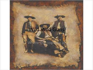 Wild  Wild  Guns