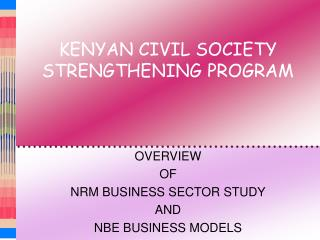 KENYAN CIVIL SOCIETY STRENGTHENING PROGRAM