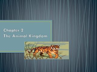 Chapter 2 The Animal Kingdom