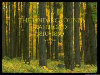 THE UNDERGROUND RAILROAD 1810-1850