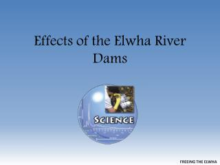 Effects of the Elwha River Dams