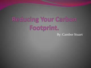Reducing Your Carbon Footprint.