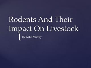 Rodents  A nd Their Impact On Livestock