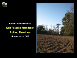 Alachua County Forever San Felasco Hammock Rolling Meadows November  23,  2010
