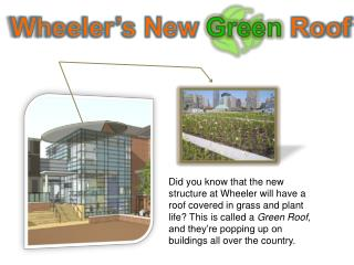 Wheeler's New  Green  Roof