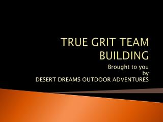 TRUE GRIT TEAM BUILDING