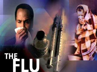 Influenza in Humans 2009