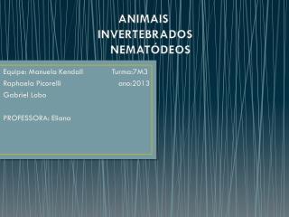 ANIMAIS   INVERTEBRADOS     NEMATÓDEOS