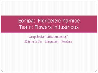 Echipa : Floricelel e harnice Team:  F lowers  industrious