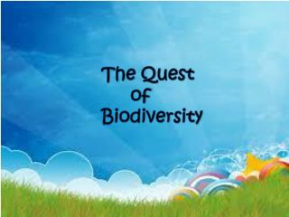 The Quest 	of  Biodiversity