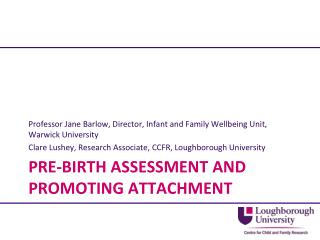 Pre-birth assessment and promoting attachment