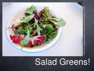 Salad Greens!