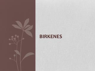 Birkenes