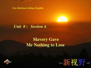 Slavery Gave  Me Nothing to Lose
