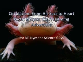 Circulation: From Air  S acs to Heart Facts: Chapter 42: A Learning Adventure