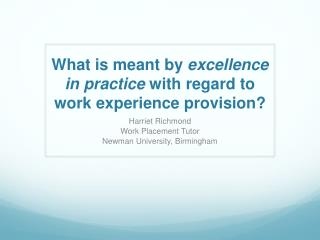 What is meant by  excellence in practice  with regard to work experience provision?