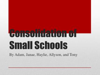 Consolidation of Small Schools