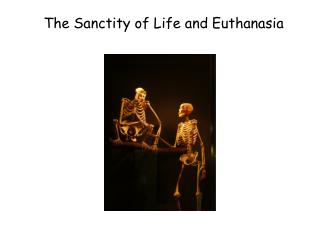 The Sanctity of Life and Euthanasia