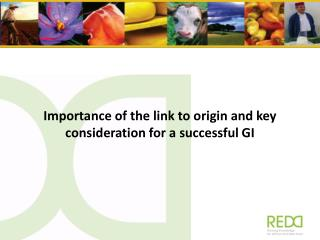 Importance of  the link  to origin and key  consideration for a  successful GI