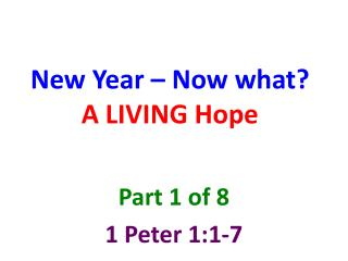 New Year – Now what? A LIVING Hope