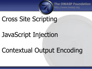 Cross Site Scripting JavaScript Injection Contextual Output Encoding