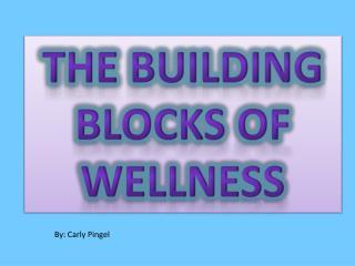 The building blocks of wellness