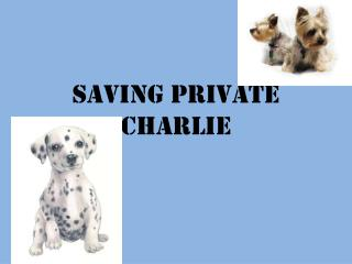 Saving Private Charlie