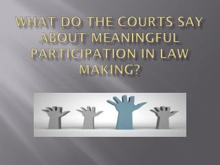 what  do  the courts say about meaningful  participation IN LAW MAKING?