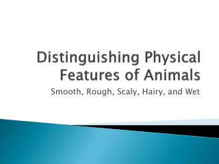 Distinguishing Physical Features of Animals