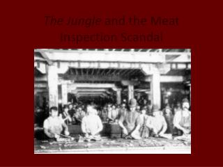 The Jungle  and the Meat Inspection Scandal
