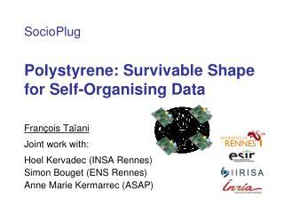 Polystyrene: Survivable Shape for Self-Organising Data