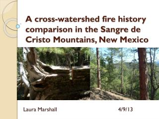 A cross-watershed fire history comparison in the Sangre de Cristo Mountains, New Mexico